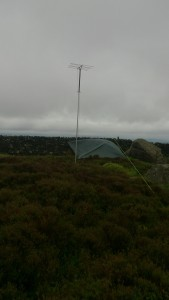 Tarp and Antenna